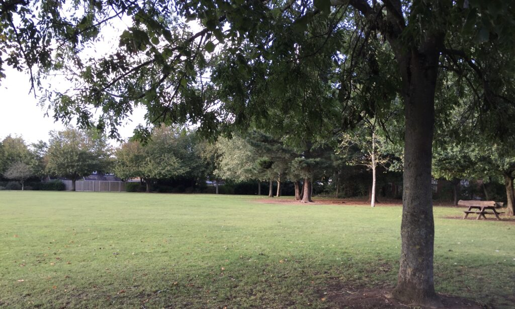 The green area at Lionmede Park