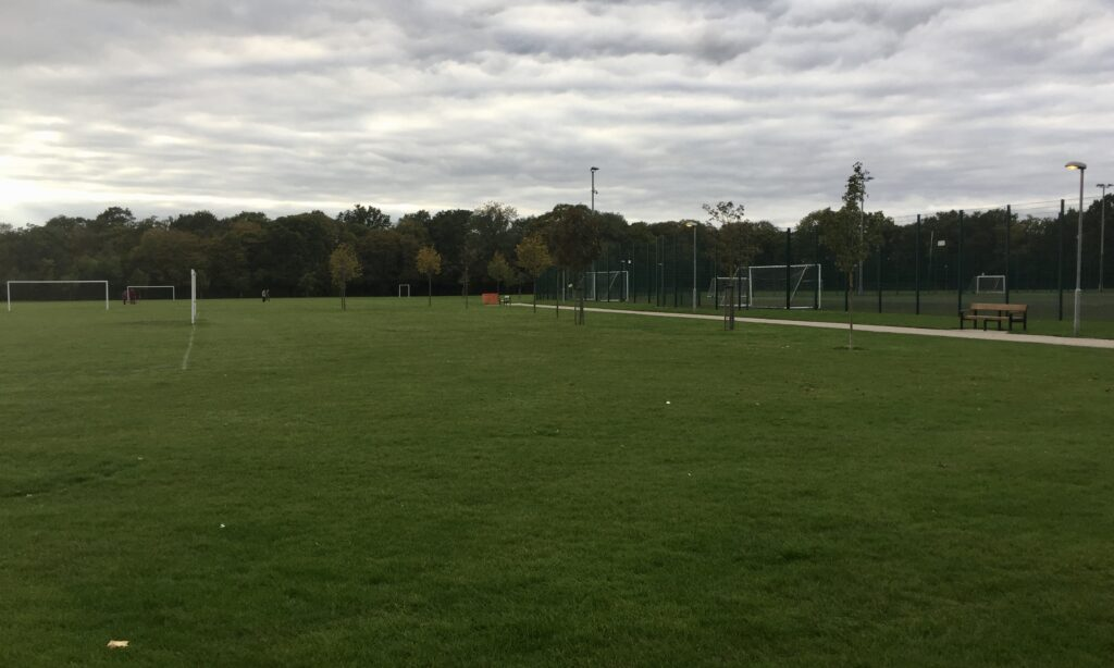 The sports fields at Melbourne Park